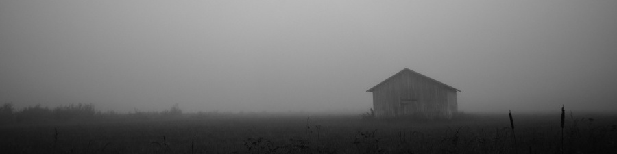 shed_field-wallpaper-900x225
